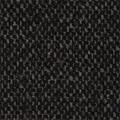 1321900 BLACK